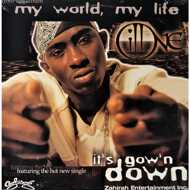 Ill One - It's Gow'n Down / Godfather Shit