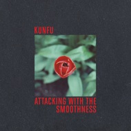Kunfu - Attacking with the smoothness