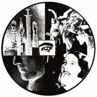Danny Brown - Ain't It Funny (Picture Disc - RSD 2017)