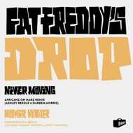 Fat Freddy's Drop - Mother Mother / Never Moving Remixes